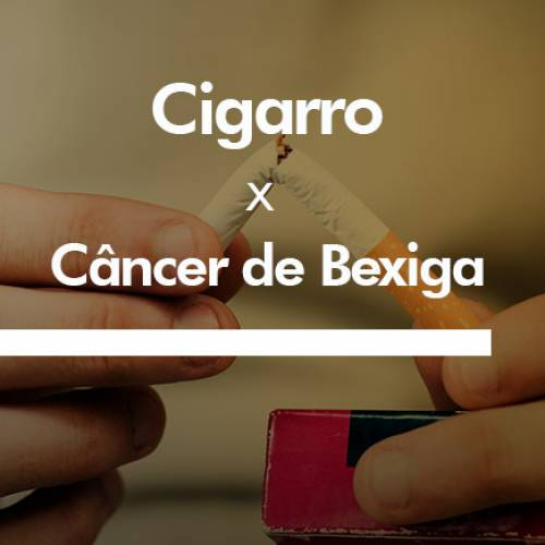 Cigarros X Câncer de Bexiga